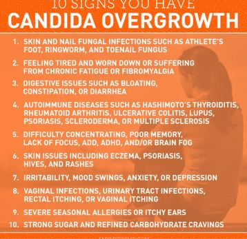 what is candida auris